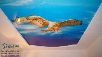 Фотография натяжного потолка с фотопечатью в Калуге