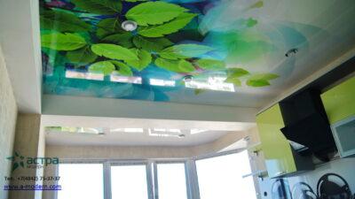 Фотопечать листья на потолке