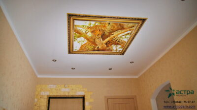 Фотопечать на потолке гепард