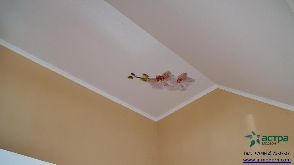 Натяжной потолок на мансарде с фотопечатью