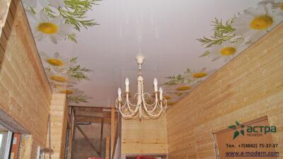 Потолок с рисунком ромашки