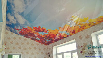 вотопечать на натяжном потолке калуга